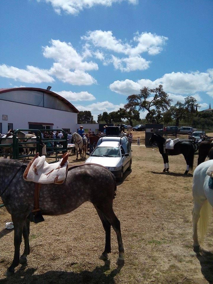 II Feria Rociera