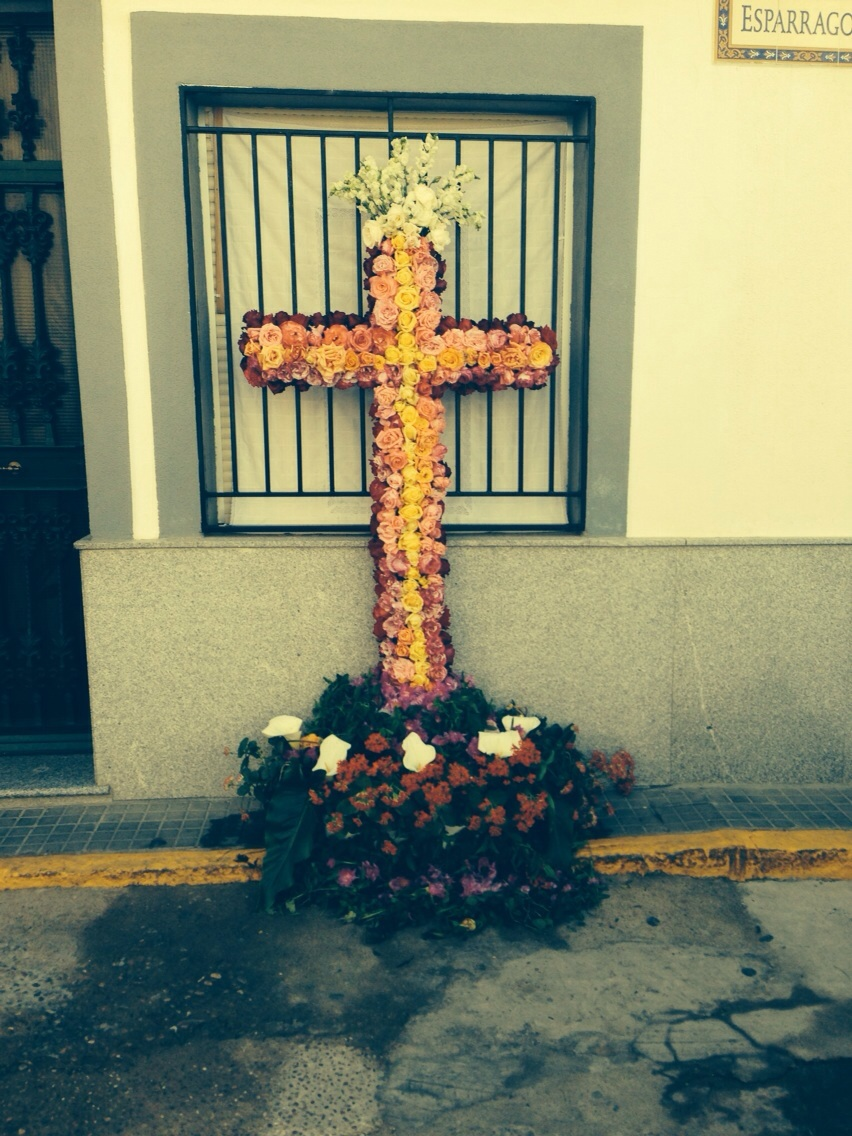 Cruces 2015